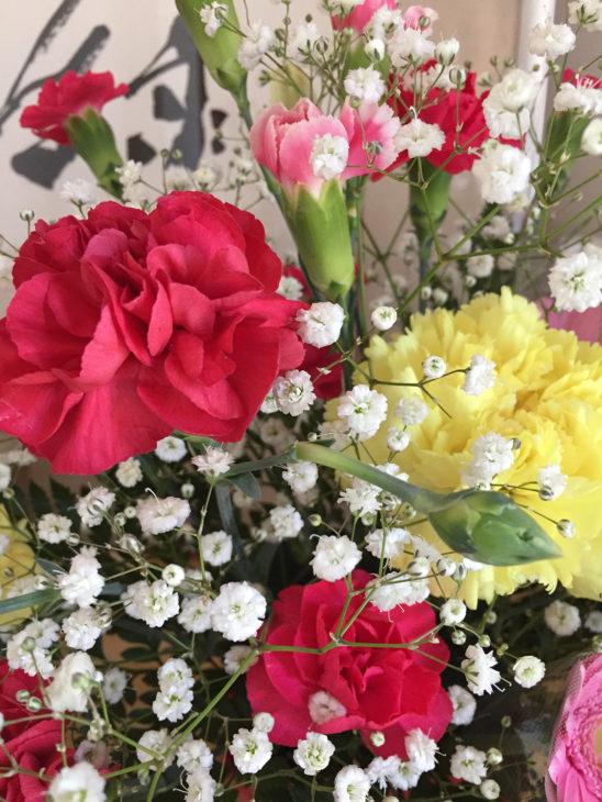 母の日|上越・糸魚川・妙高の注文住宅工務店|木の家の新築・リフォーム|キノイエ|