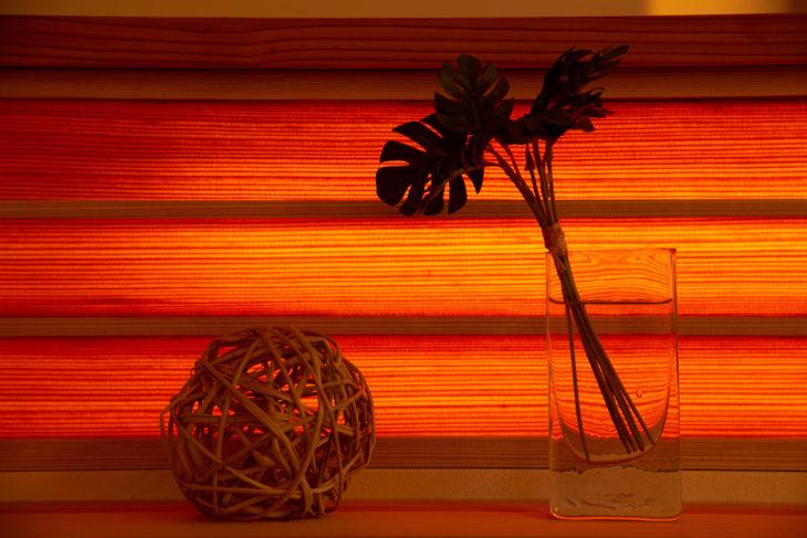 |上刈の家|植栽|多羅葉|隙間のない家|完成見学会|高気密高断熱|パッシブデザイン|上越・糸魚川・妙高の工務店|新築・リフォーム|自然素材の注文住宅|キノイエ|カネタ建設|
