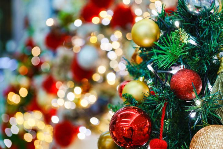|クリスマス|上越・糸魚川・妙高の家づくり|木の家をつくる工務店|新築・リフォーム|自然素材の注文住宅|キノイエ|カネタ建設|高気密高断熱|パッシブデザイン|
