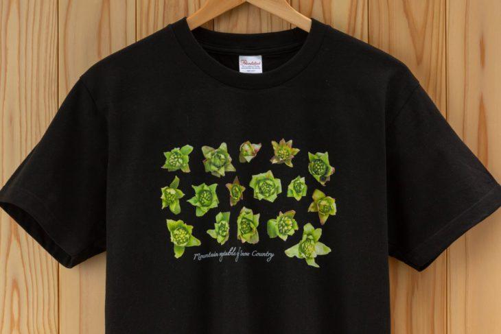 山菜Tシャツ2|上越・糸魚川・妙高の家づくり|木の家をつくる工務店|新築・リフォーム|自然素材の注文住宅|キノイエ|カネタ建設|高気密高断熱|パッシブデザイン|新潟の家|