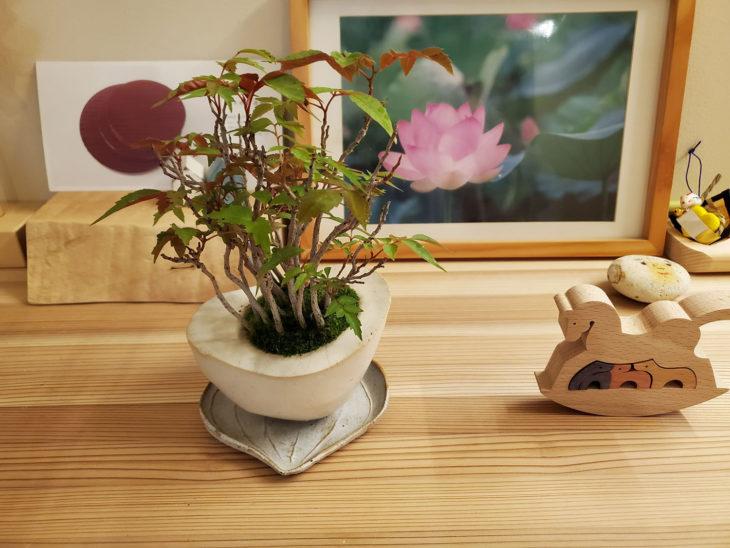 |西本町の家|丁寧な暮らし|定期点検|上越・糸魚川・妙高の家づくり|木の家をつくる工務店|建て替え|自然素材の注文住宅|キノイエ|カネタ建設||ZEH|高気密高断熱|