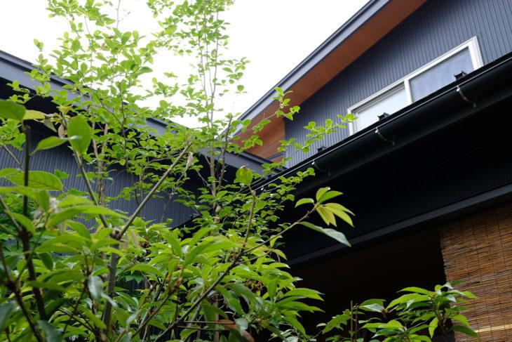 |西本町の家|緑に囲まれた暮らし|丁寧な暮らし|定期点検|上越・糸魚川・妙高の家づくり|木の家をつくる工務店|建て替え|自然素材の注文住宅|キノイエ|カネタ建設|ZEH|